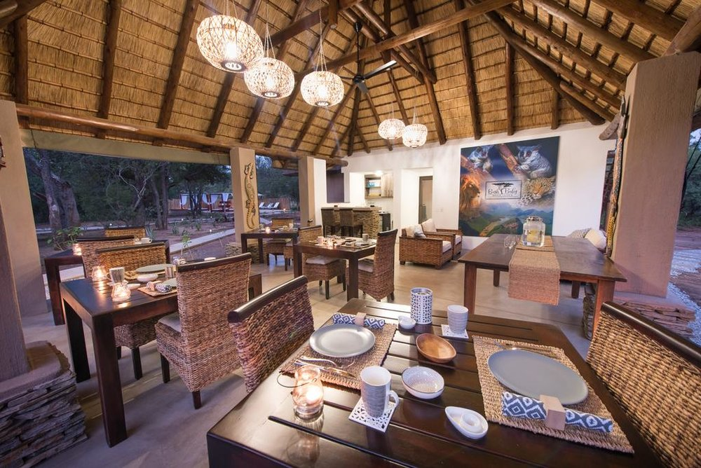 Travel_agency_based_in_South_Africa_Safaris_Sejour Activités_Kruger park_Panoramic route_Nelspruit_hoedspruit_bush_baby_river_lodge3.jpg