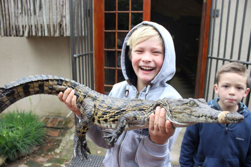 Le_Bonheur_Crocodile_Farm.jpg