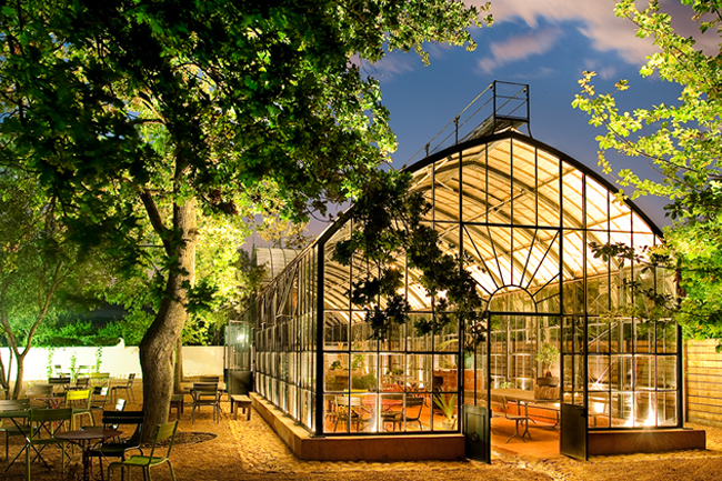 Greenhouse-Babylonstoren.jpg