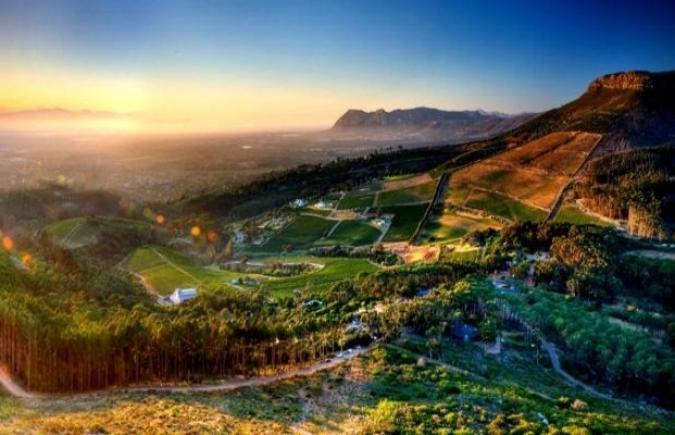 constantia-glen-winery.jpg