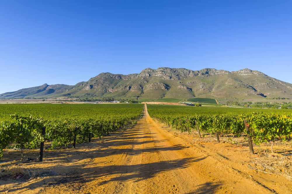 Robertson-Wine-Valley.jpg