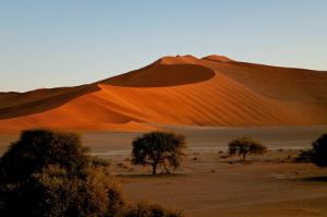 Le meilleur de la Namibie - La Namibie c'est le rêve pour les aventuriers. Des grands marais salants du parc national d'Etosha aux naufrages mystérieux de la côte des squelettes; des dunes de sable dorées de Sossusvlei à la ville portuaire de Swakopmund.                                                 12 jours/ 11 nuits