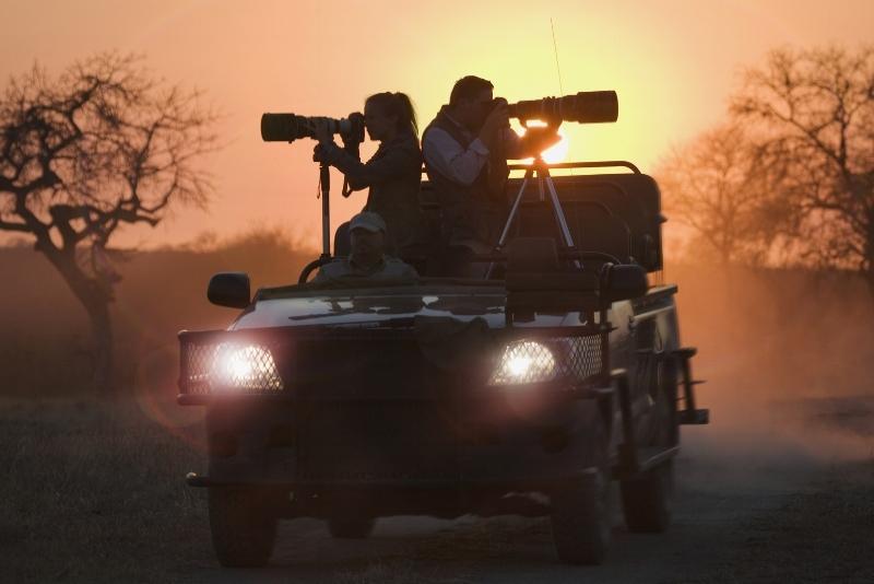 Safari photo en Afrique -