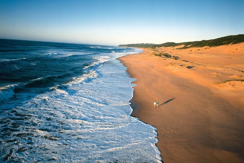 Elephant Coast -