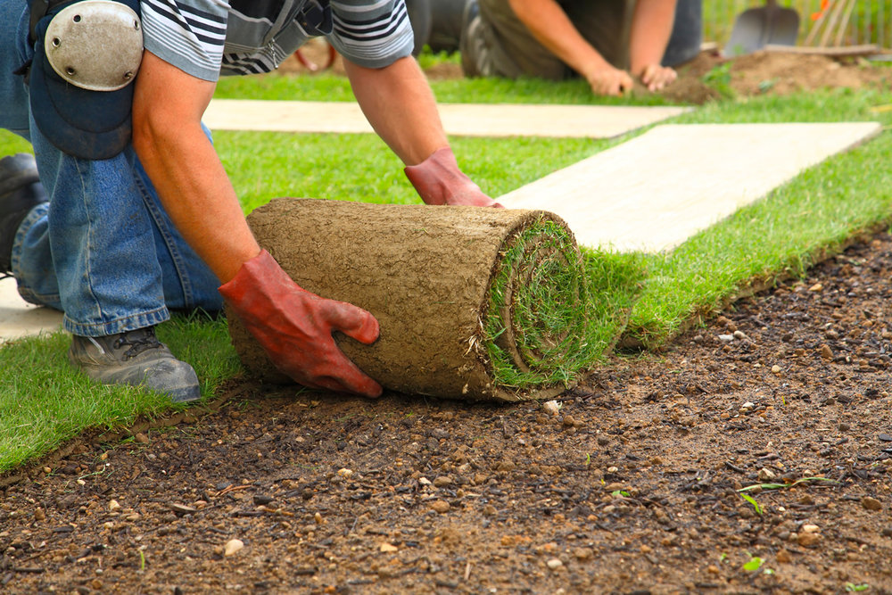 Landscaping Portsmouth, NH Sod Installation