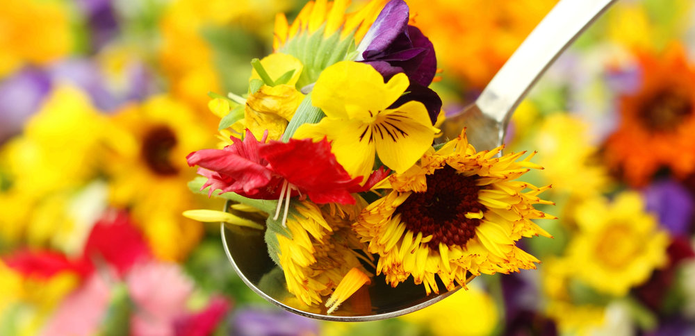 Food Trends: Edible Flowers | Pop Up Cookspace
