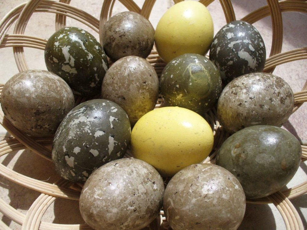 Traditional Egyptian Easter Eggs coloured using natural dyes