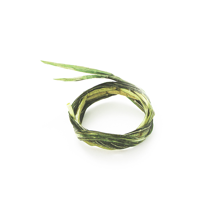 grass ring.jpg