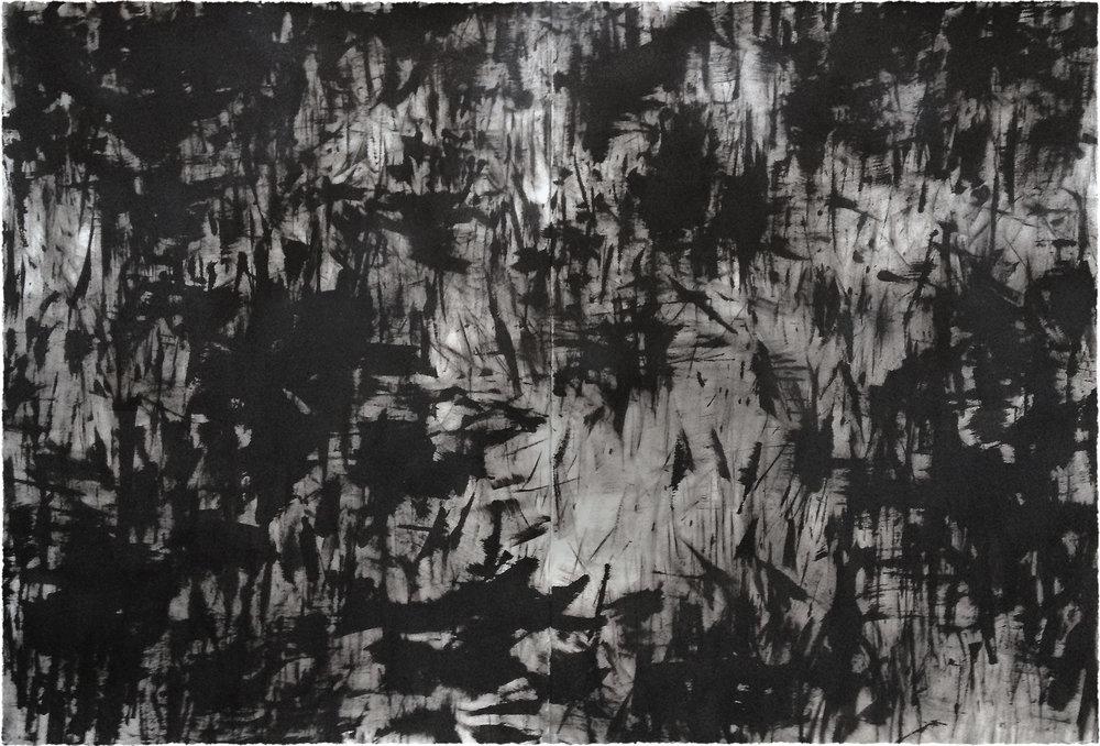 Eco Negro — Diego Berjon