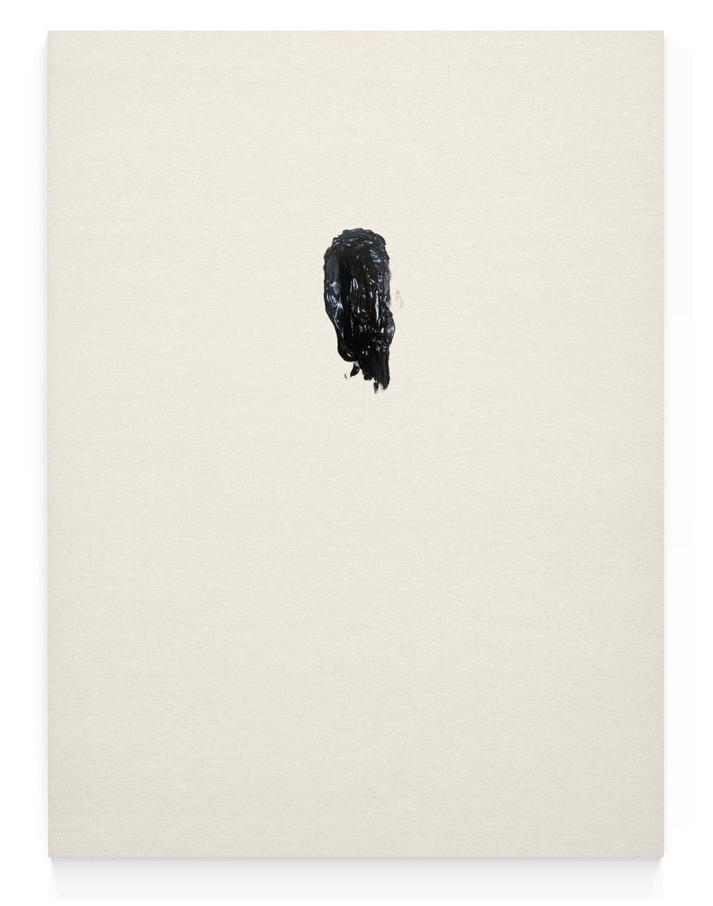Toda la Pintura Que Cabe en Mis Manos — Diego Berjon