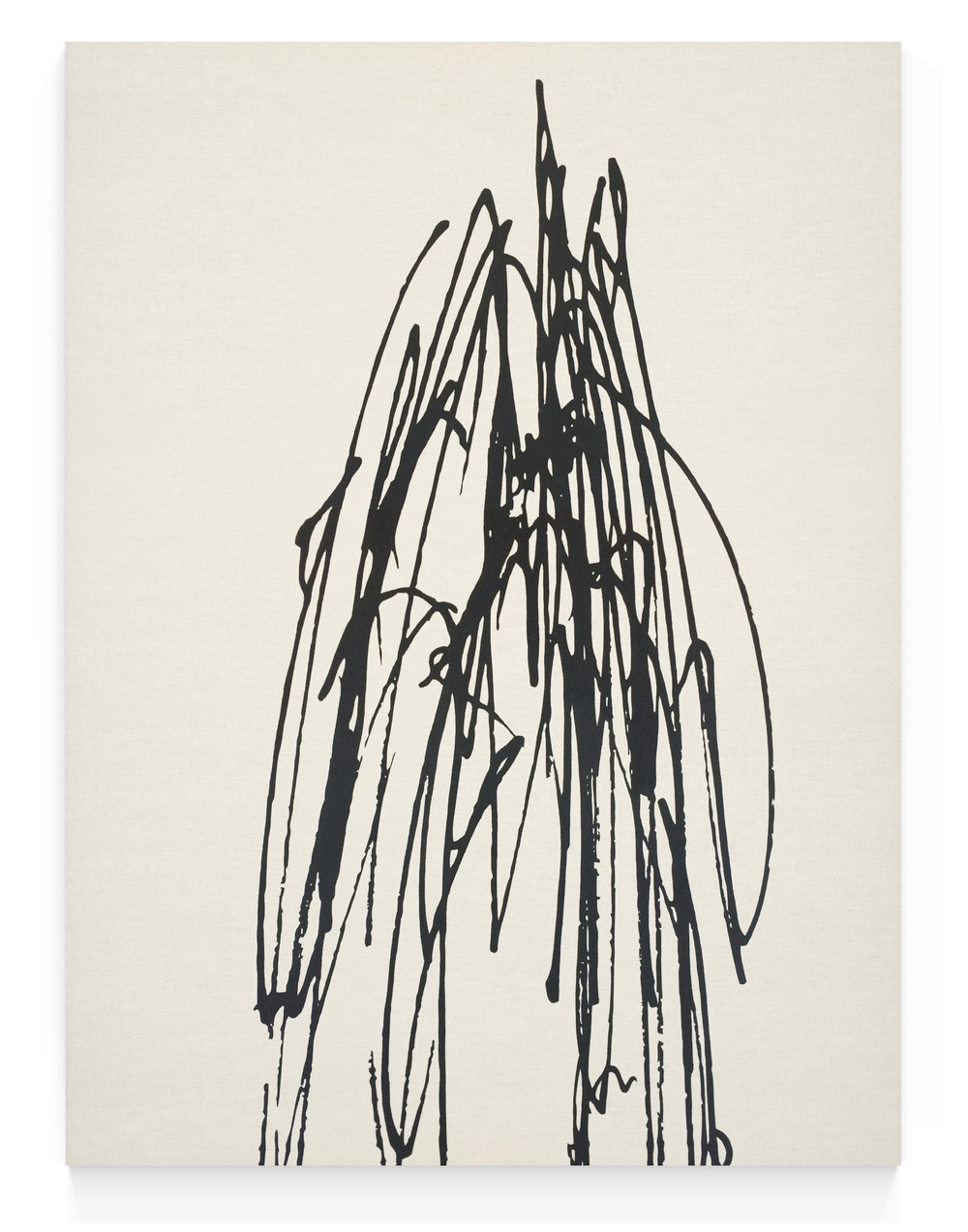 Portrait of a Line, Diego Berjon