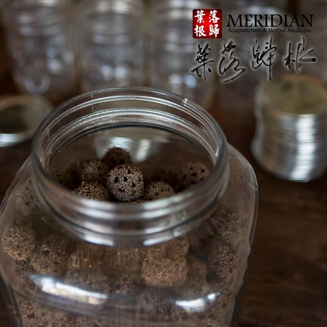 Chinese Herbal Medicine, along with the other components of Chinese medicine, is based on the concepts of Yin and Yang. It aims to understand and treat the many ways in which the fundamental balance and harmony between the two may be undermined and the ways in which a person's Qi or vitality may be depleted or blocked. * #acupuncture #acupunctureworks #acupuncturists #herbalmedicine #chinesemedicine #tcm #traditionalchinesemedicine #herbalife #acupuncturelife #alternativemedicine #alternativehealth #alternativehealing #holistichealth #holistichealing #holistic #health #chinese #qi #meridian #meridians #meridiansystem #meridianlouisville #louisville #kentucky #sharelouisville #mylouisville #igerslouisville #louisvillelove #louisvillelocal