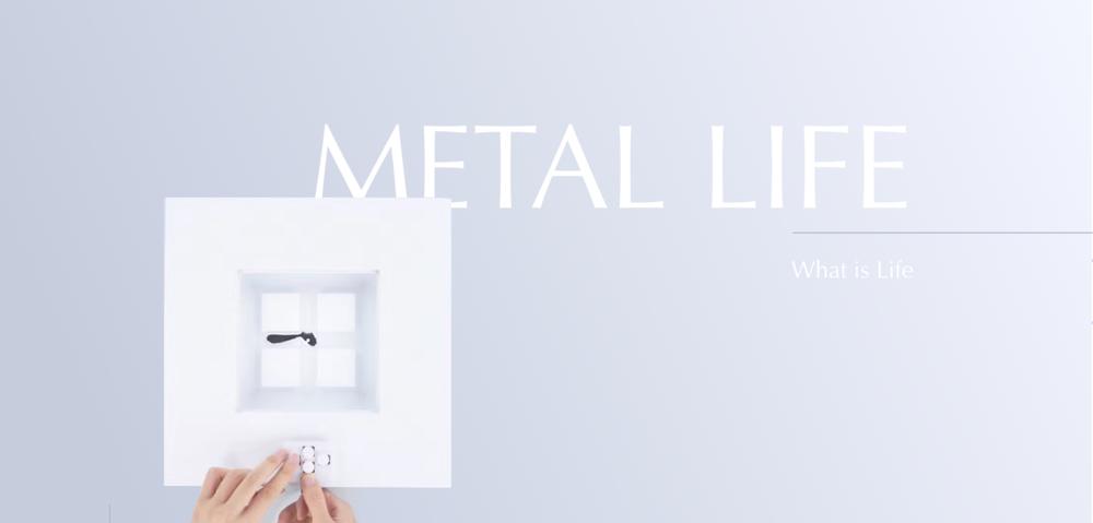 metalLife AAA.jpg