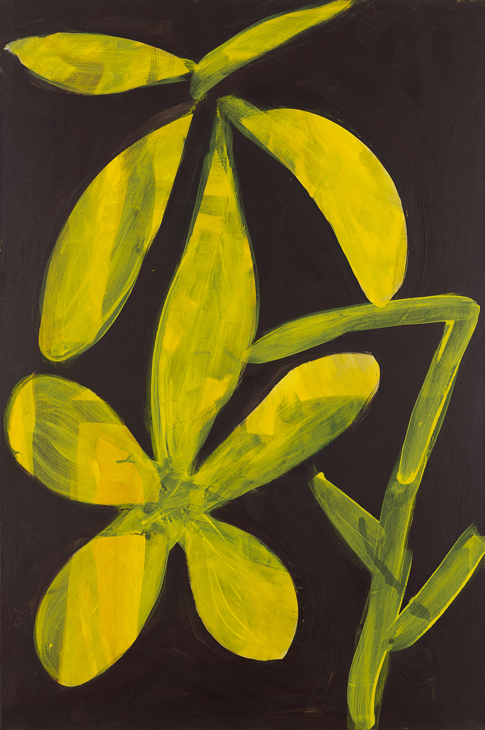 flower 7, yellow/dark 2015