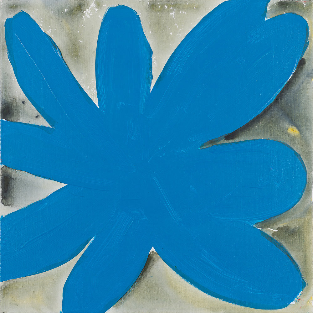 flower, blue, black, white,  2015