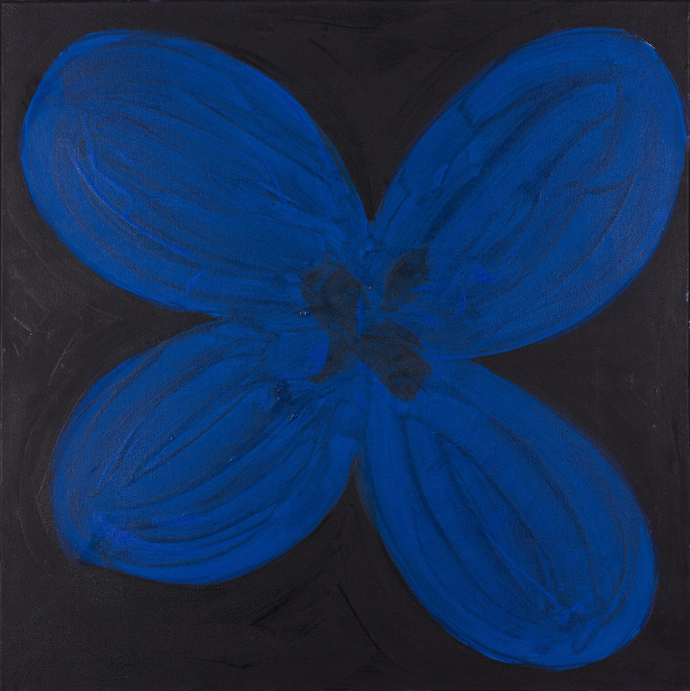 flower, blue, black, 2014