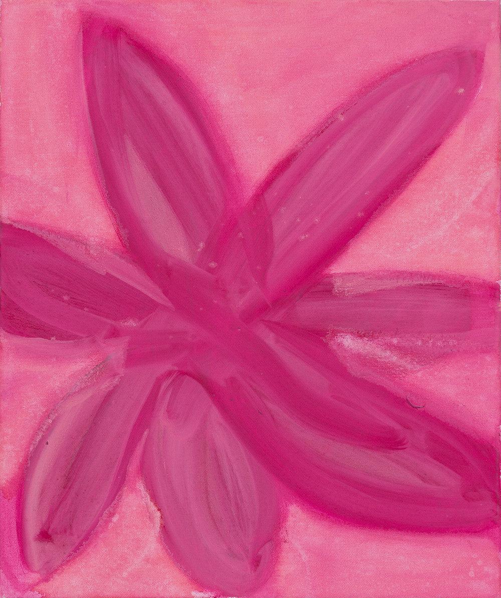 pink flower, 2014