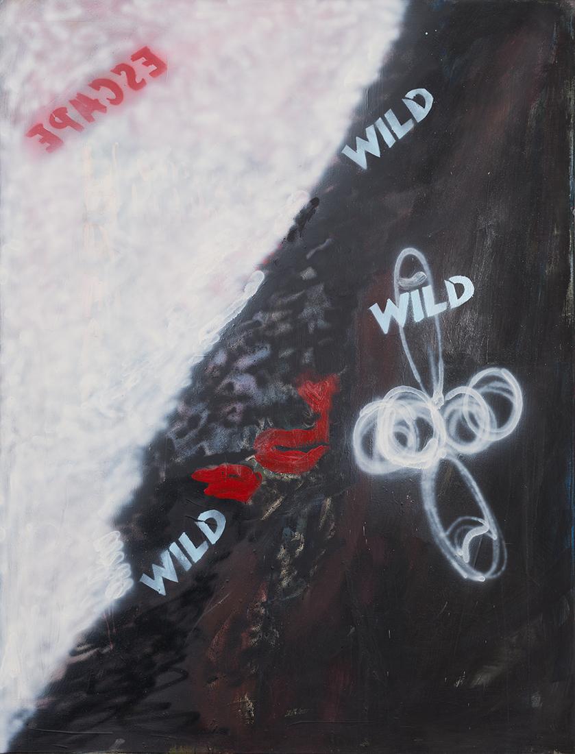 wild, 2006