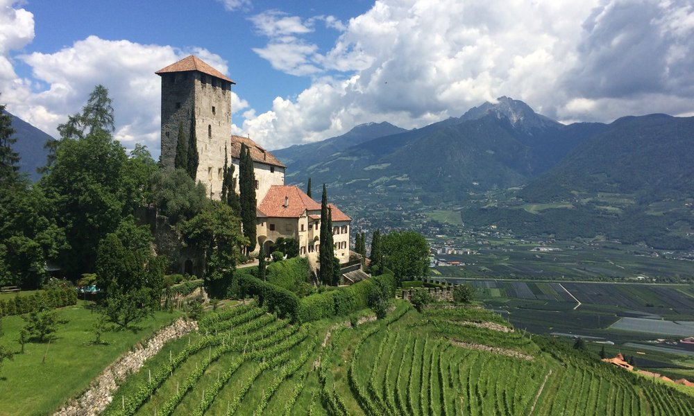 Italian castle on hillside with terraced wine vines below
