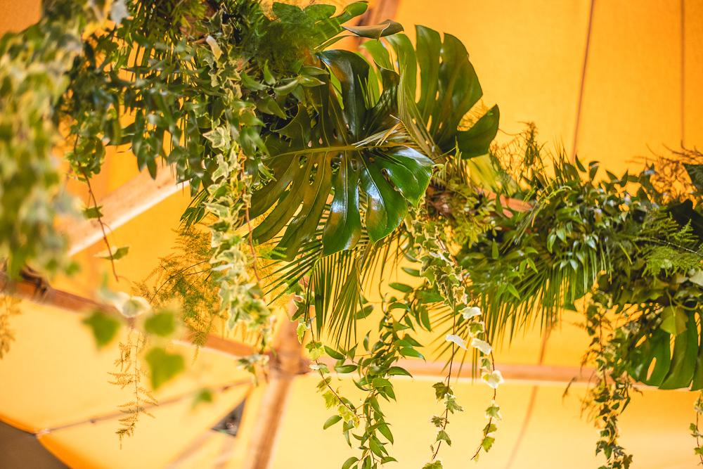 LITW jungle hoop.jpg