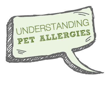 Pet Allergies Icon.png