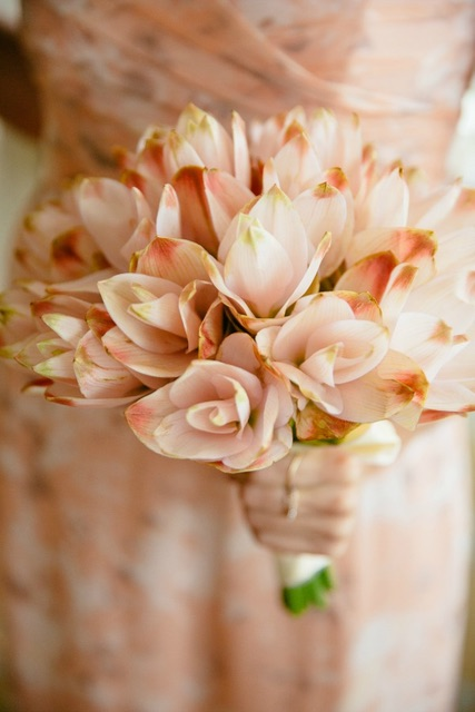 coral-bridesmaid-bouquet.jpg