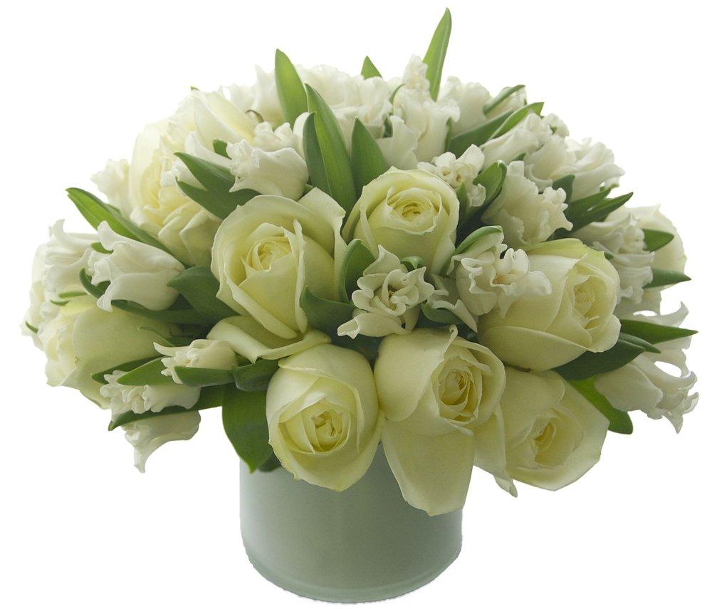 White Rose and Tulip Comp
