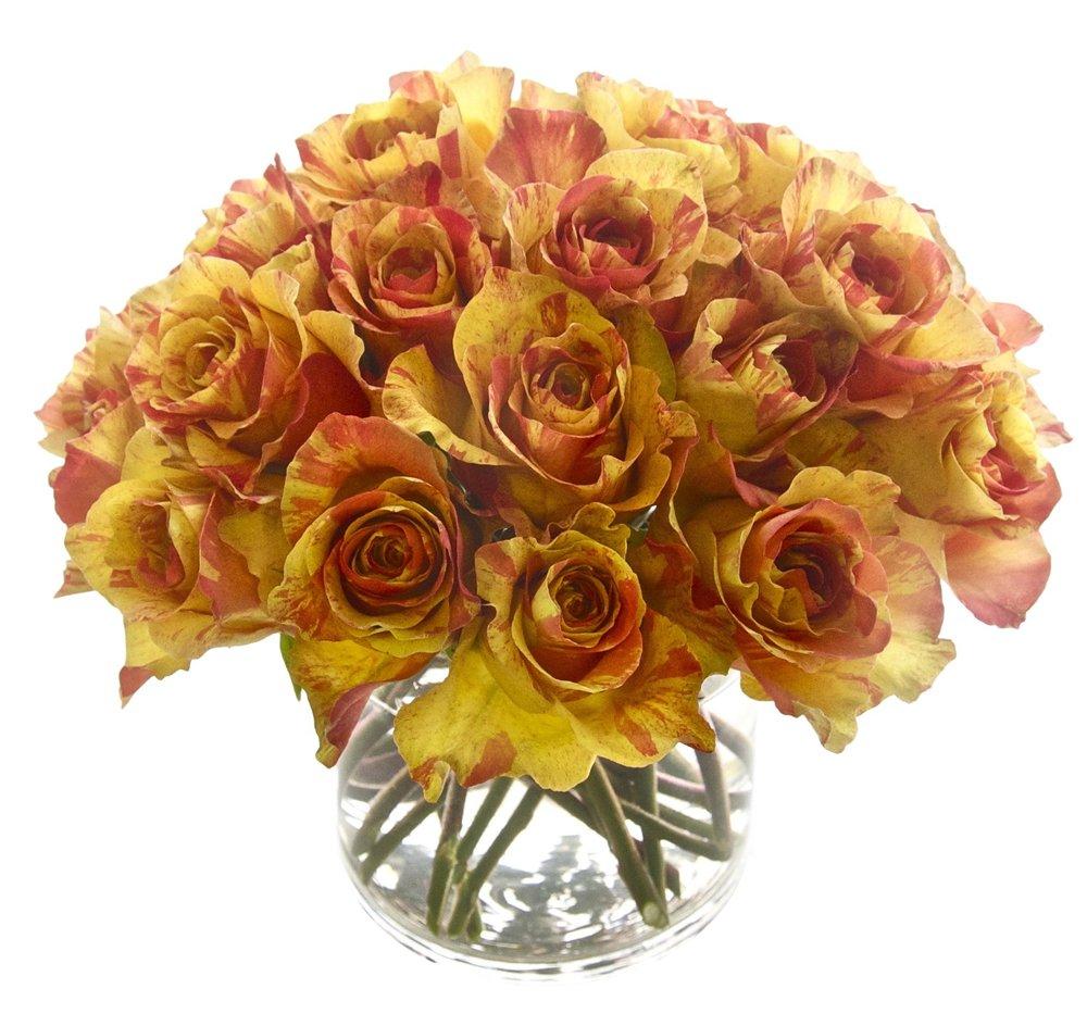 Novelty Orange Roses