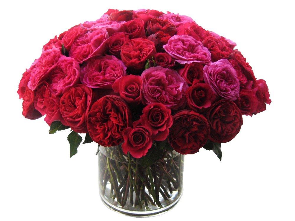Romantic Rose Comp