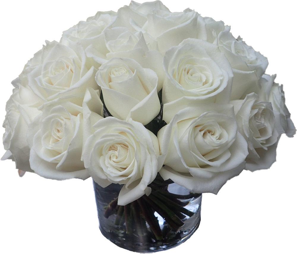 White Roses start at $100
