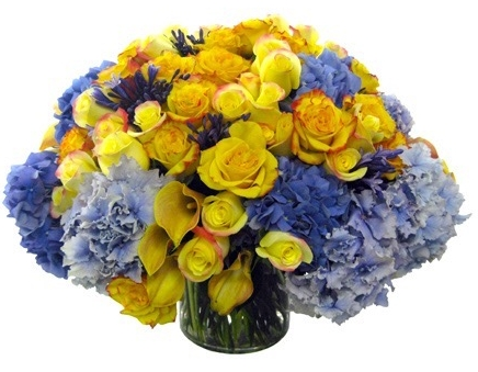 Blue and Yellow Rose Comp starts at $275