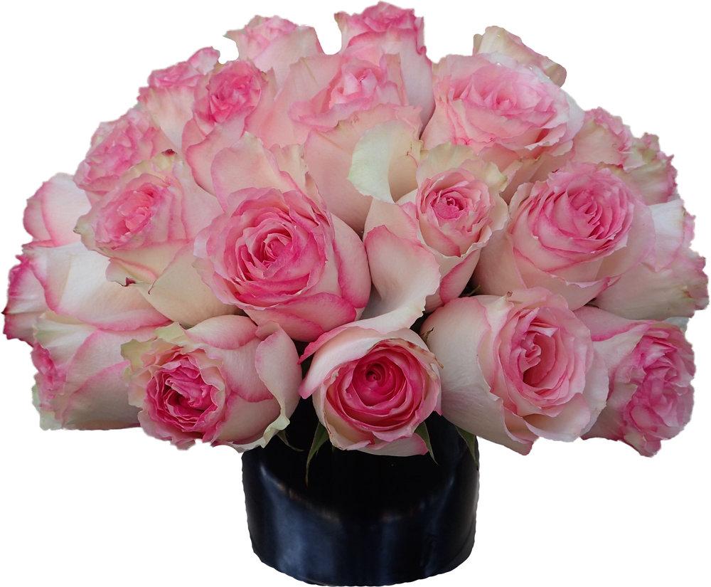 antique pink roses copy.jpg