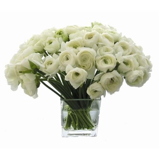 White Ranunculus Starting at $200