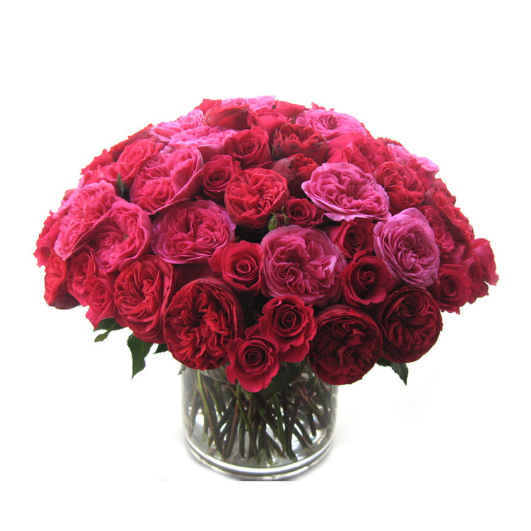 Luxe Garden Roses from $350