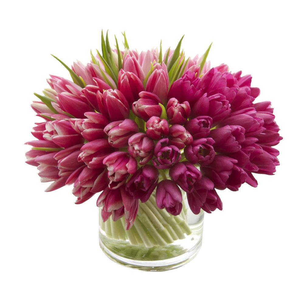 Tonal Pink Tulips