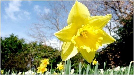 Gagnez 30 pourcents de plus en mars grâce aux Récompenses de printemps d'eBay Partner Network