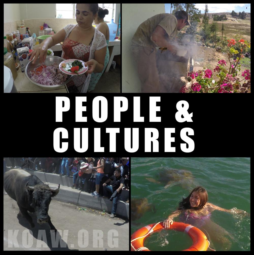 CULTURE koaw org.png