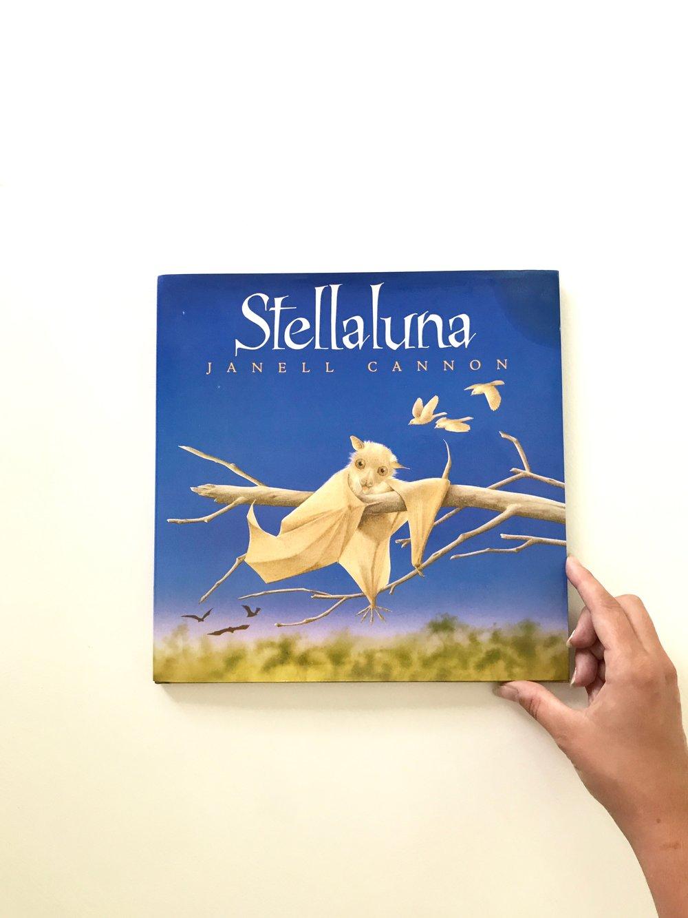 Stellaluna.jpg