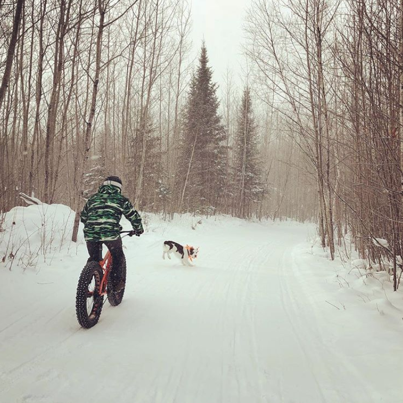 Boy riding big tire bike on winter trail in northern wisconsin presque isle with dog
