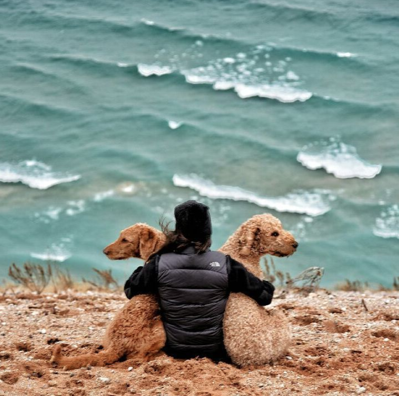 Woman sitting on shore of Lake Michigan with her two dogs