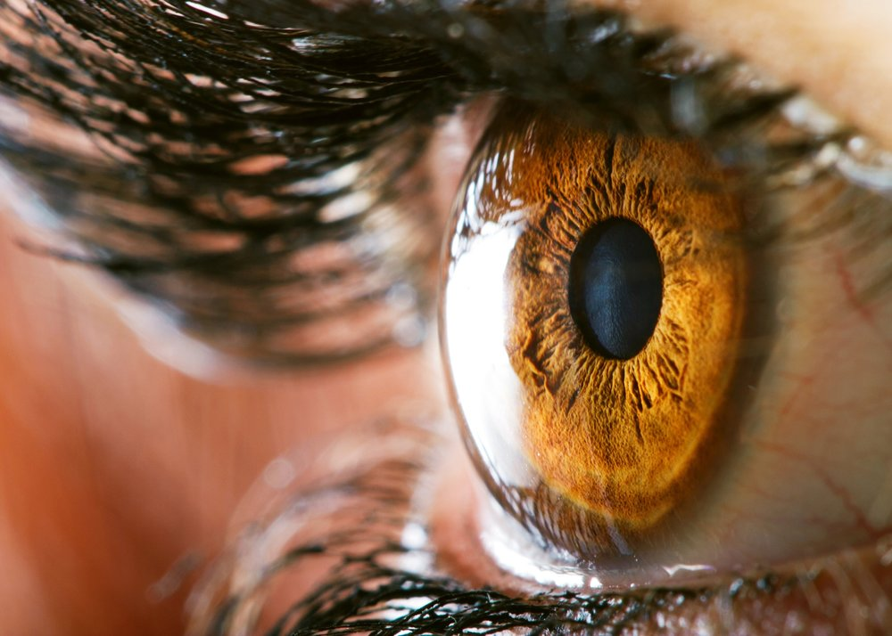 Close up of the iris of the eye