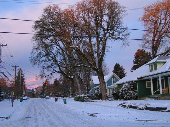 SnowOn23rd.jpg