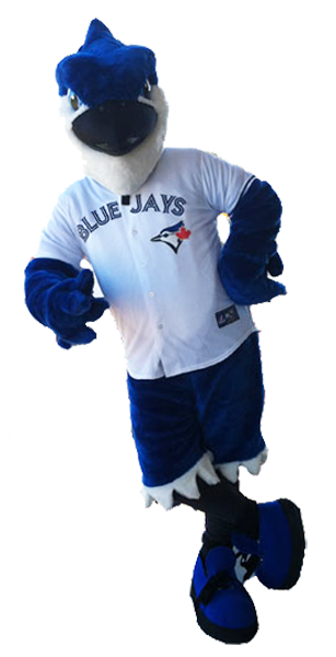 Bird Blue Jay Dunedin.png
