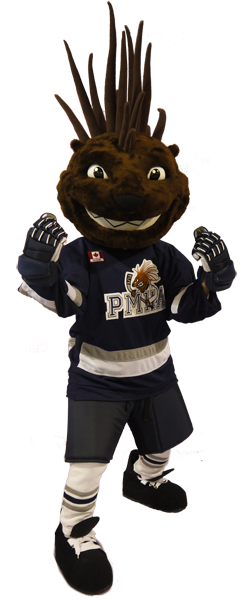 Porcupine Hockey.png