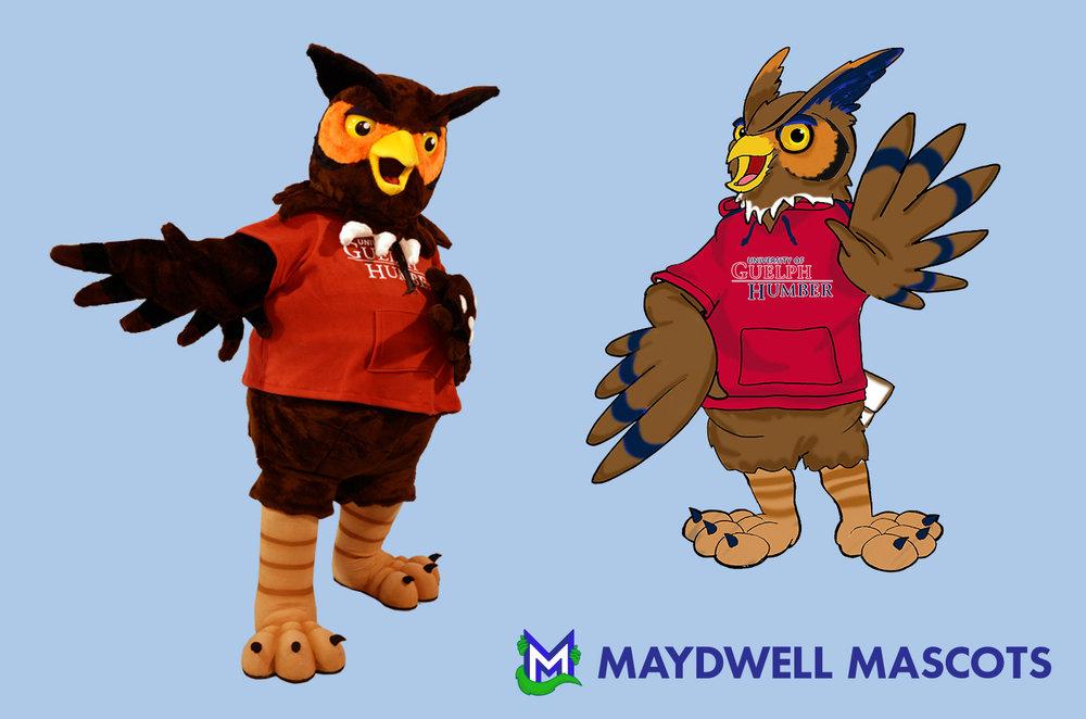 Bird Owl Guelph