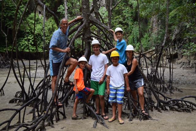 Mangrove Roots.jpg