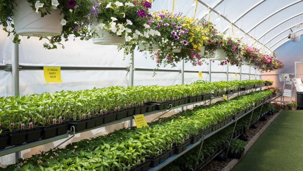 Farm & Home Hardware — Garden Center