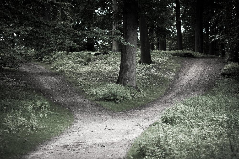 Flickr_-_Laenulfean_-_crossroads.jpg