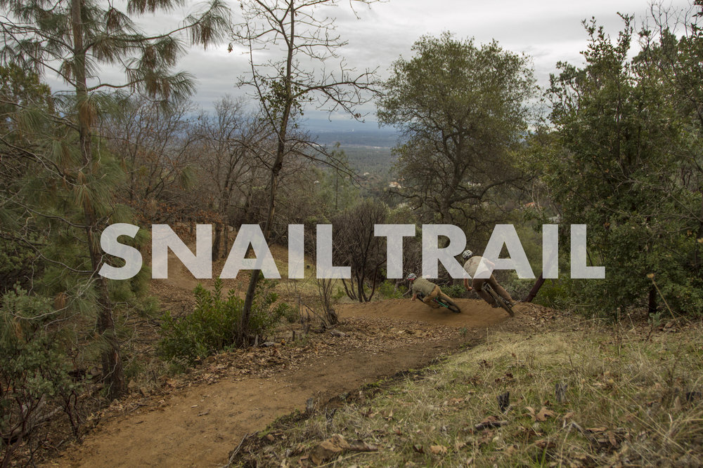 Snail Trail Project.jpg