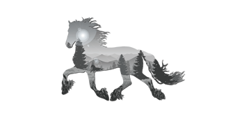 jho-logo-transparent-white.png